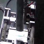 Machine à emballer automatique de petit sachet de poudre de tabac