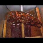 Machine à emballer complètement automatique de petits sacs de miel pour le liquide et la pâte