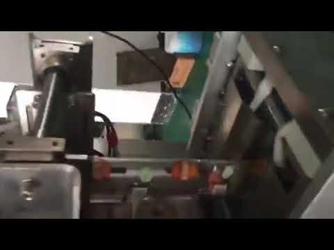 Sachet en plastique sachet remplissant la machine à emballer de cachetage de liquide pour le vinaigre de sauce de soja de boisson de lait